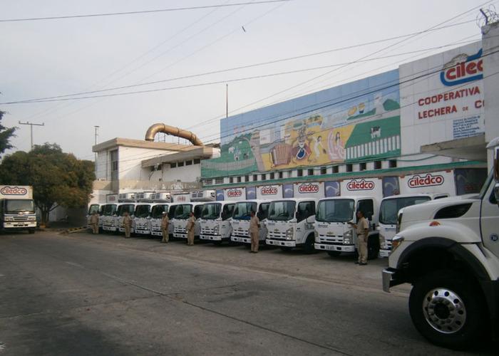 Documento foto 1 camiones de ciledco